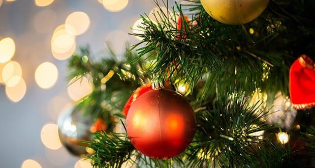 weisse weihnachten abcmallorca erleben sie mallorca von. Black Bedroom Furniture Sets. Home Design Ideas