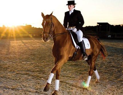 equestrian-elegance-001