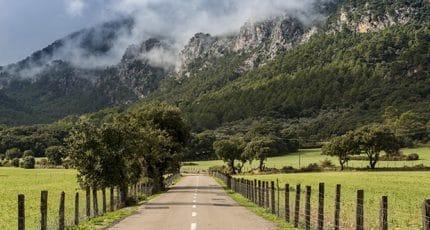 Road in Majorca