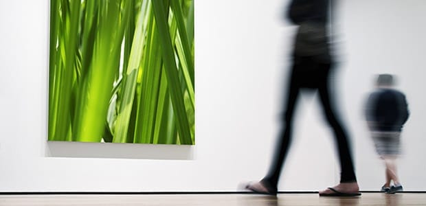 >Art and Museums