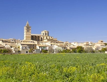 Frhling auf Mallorca