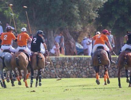Engel & Völkers Polo Cup_Polo01