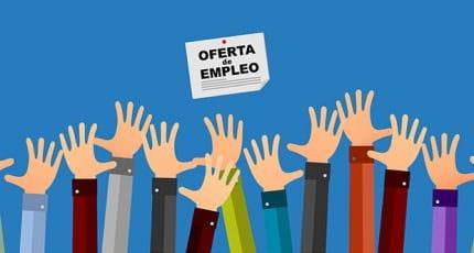 job-offer-knox