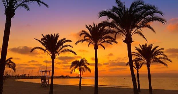 Afbeeldingsresultaat voor mallorca el arenal beautiful
