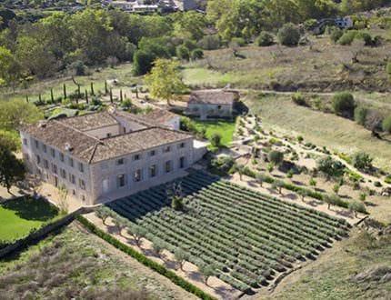 View More: http://fotokamal.pass.us/savinya