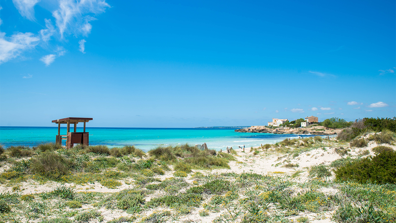 Es Trenc Beach Abcmallorca Giving You The Best Experience Of Mallorca