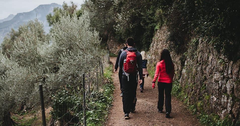 27c495e7a Mallorca s top 20 things to do in winter - abcMallorca giving you ...